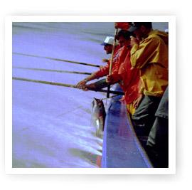 Pesca tradicional del bonito del norte